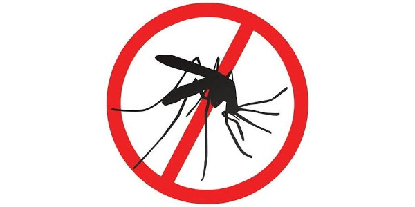 How To Use Lemongrass Oil For Mosquitoes